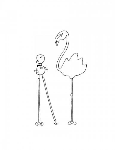 06 Flamingo